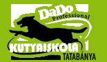 Tatabányán